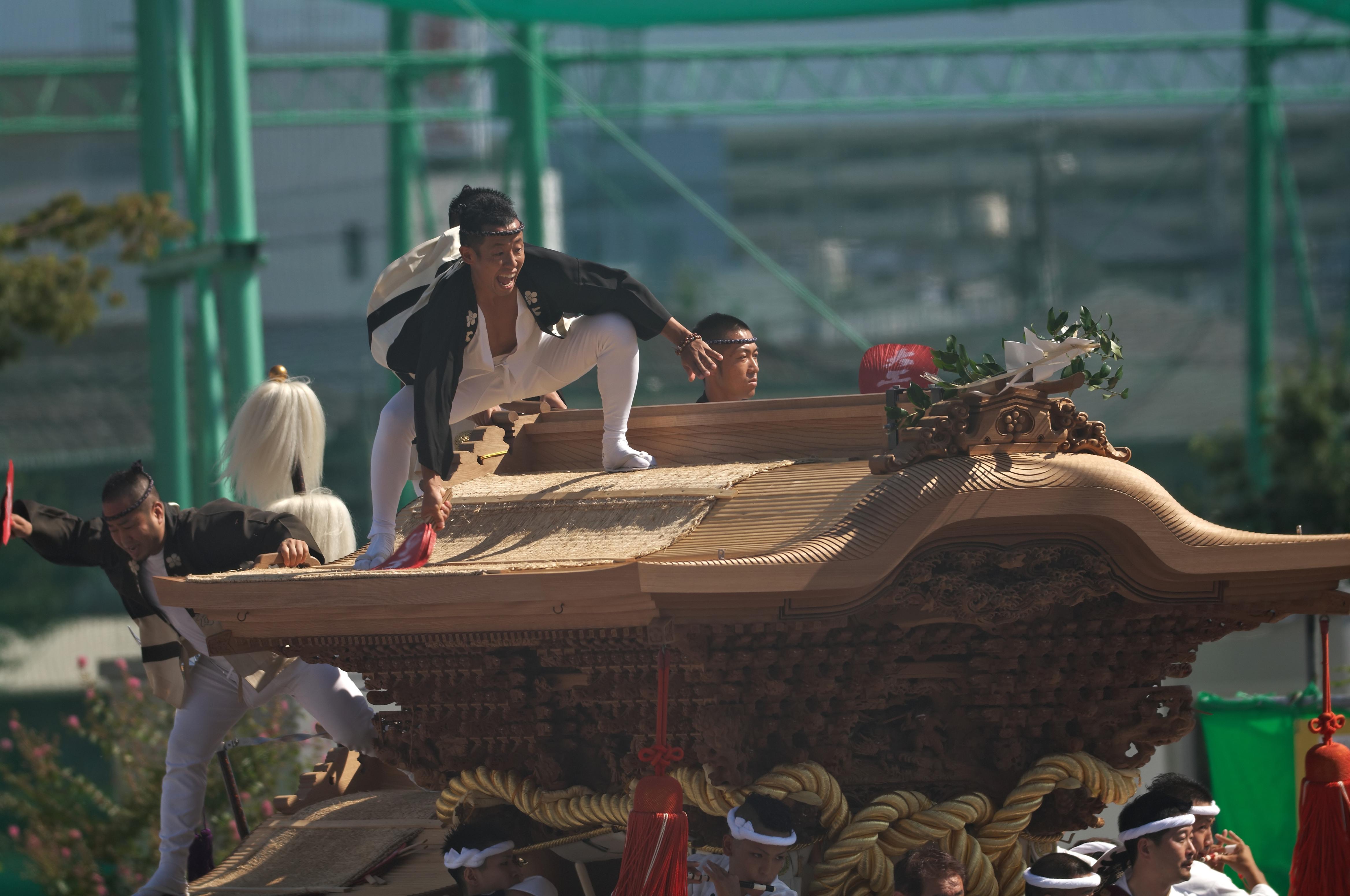 BORG71FLで撮影した野鳥・岸和田祭りだんじりの写真画像