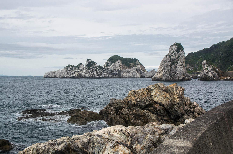 ウミネコの繁殖地白崎海岸の写真画像